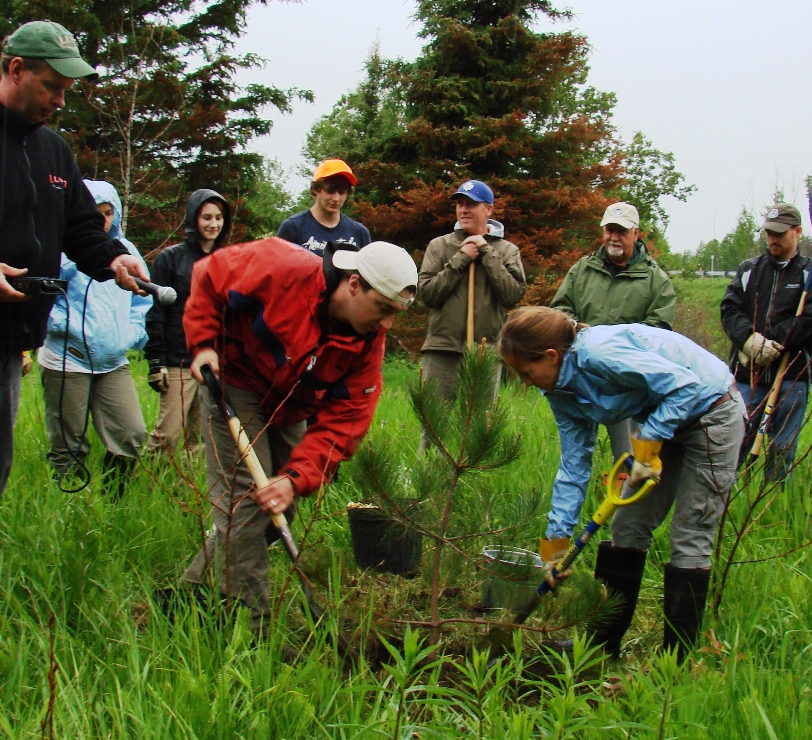 Tree planting 2010